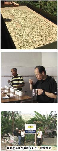 コロンビア産の高品質コーヒー、アンデスマラヴィーヤはニュークロップでお届け中です。