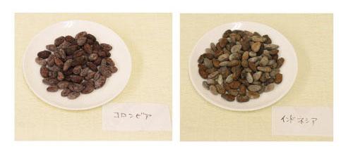 自家焙煎カカオで作る自家製チョコレート