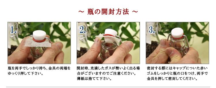 gift_bottle_info4.jpg
