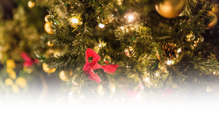 クリスマスのイメージ01