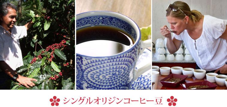 金澤屋珈琲店の産地別コーヒー豆、ストレートコーヒー豆、スペシャルティコーヒー豆、シングルオリジンコーヒー豆は厳選したコーヒー豆だけを使用し、鮮度にこだわり自家焙煎してお届けしております
