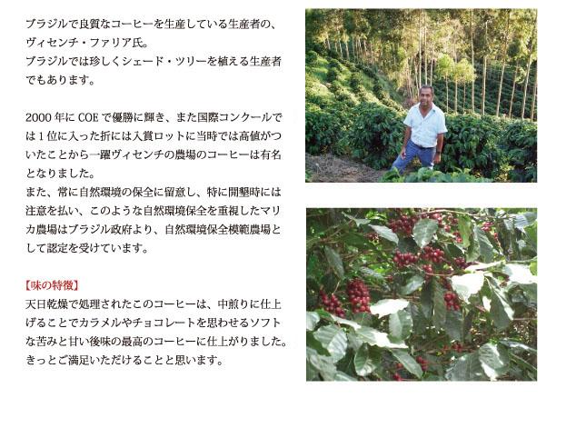 ブラジル・マリカ農園の説明02