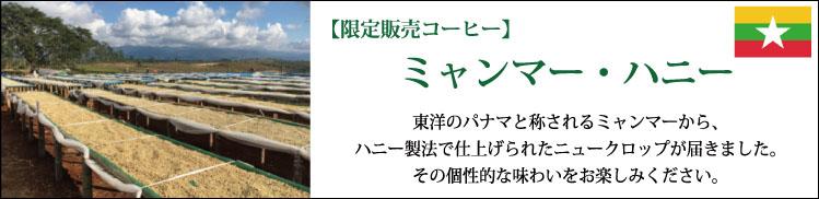特別販売コーヒー ミャンマー・ハニー