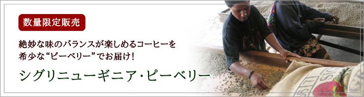 ニューギニア・シグリ農園コーヒーは只今ピーベリー販売中