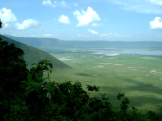 タンザニアキリマンジャロ